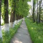 Велосипедная дорожка в Днестровске.