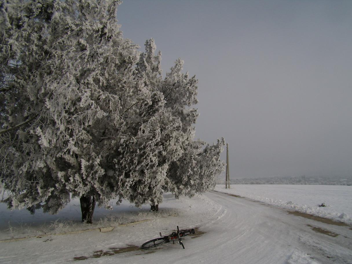 Зимний Кицканский плацдарм
