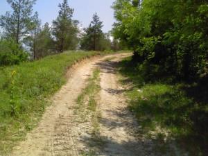 Дорога в коньоне у Ташлыка