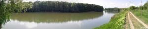 Панорама зелёной слободзейской дамбы и реки Днестр