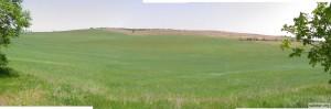 Панорама: ветер гулял по бескрайним полям