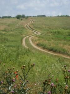 Уводящая дорога в даль