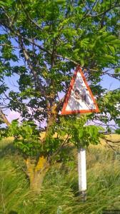 """Едва различимый знак """"Опасные повороты"""""""