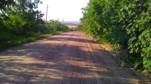 Дорога в Андрияшевки