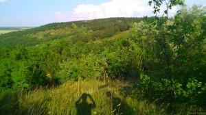 Холмы схожие с никольскими