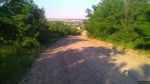Дорога меж лесополосы